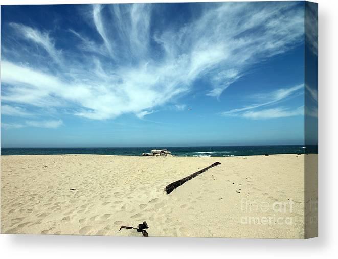 scott Creek Beach Canvas Print featuring the photograph Scott Creek Beach California Usa by Amanda Barcon