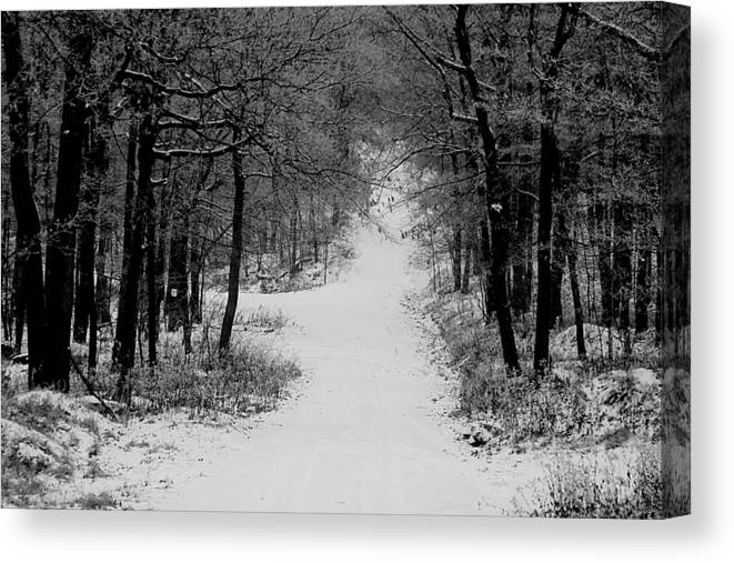 Snow Canvas Print featuring the photograph See Where It Leads. by Jean Macaluso