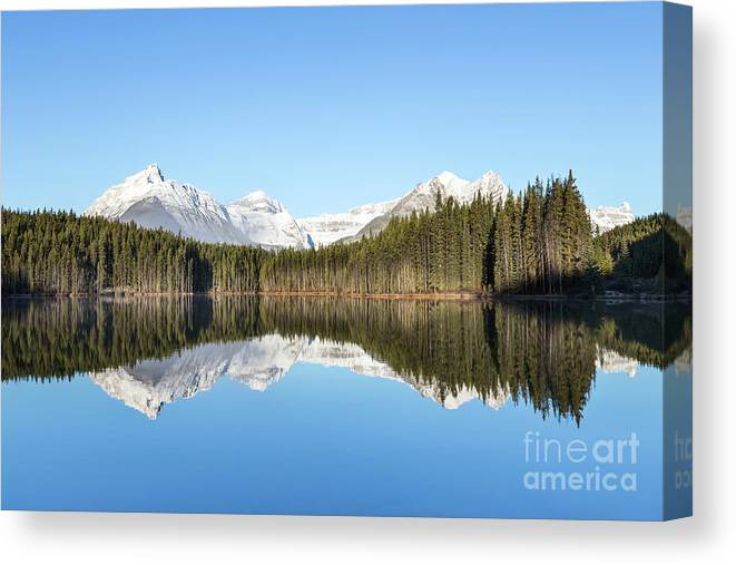 Kremsdorf Canvas Print featuring the photograph Silence Of North by Evelina Kremsdorf
