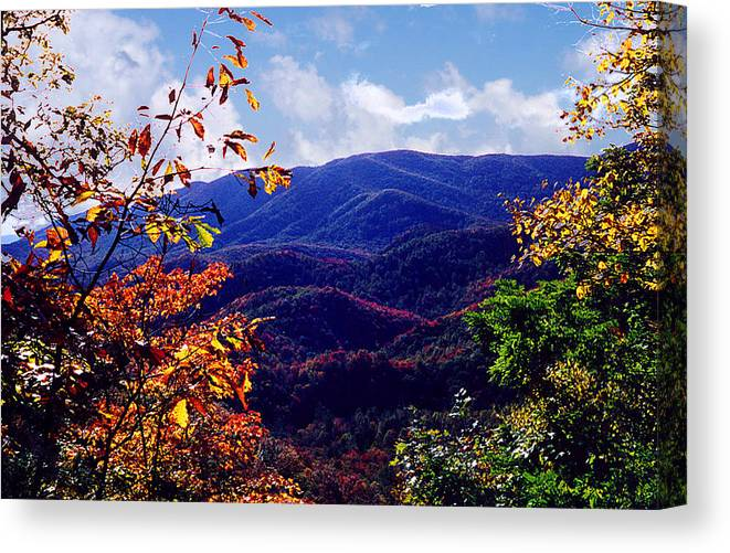 Mountain Canvas Print featuring the photograph Smoky Mountain Autumn View by Nancy Mueller
