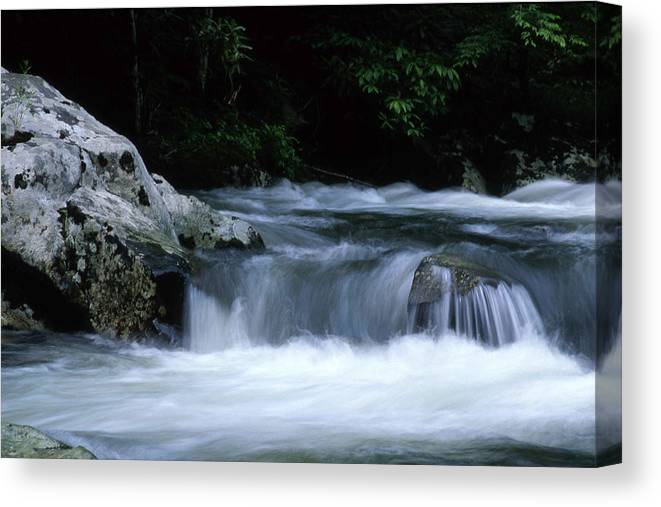Parks Canvas Print featuring the photograph Smoky Mountain Stream by George Ferrell