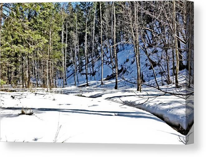 Snow Canvas Print featuring the photograph Snowy Landscape by Brenton Woodruff