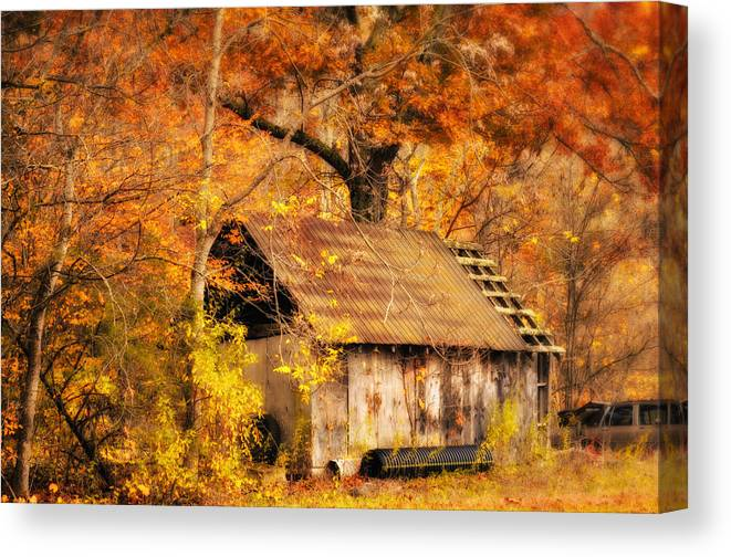 Autumn Canvas Print featuring the photograph Spare Tire by Kathy Jennings