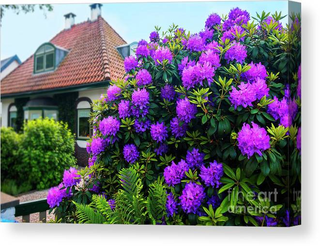 Architecture Canvas Print featuring the photograph Spring Dutch Garden by Ariadna De Raadt