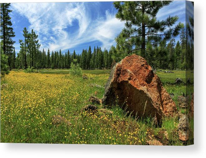 Landscape Canvas Print featuring the photograph Springtime In Lassen County by James Eddy