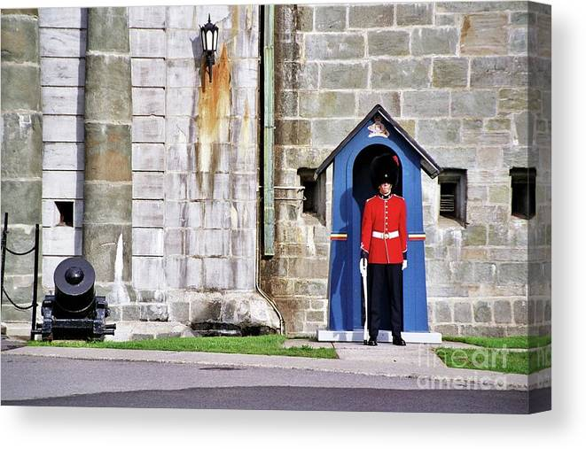 Standing Guard Canvas Print featuring the photograph Standing Guard by Allen Beatty
