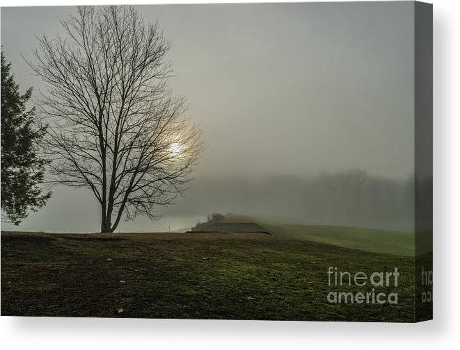 Canvas Print featuring the photograph Sunlight Serenade by Zbigniew Krol
