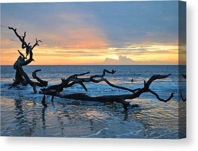 Beach Canvas Print featuring the photograph Sunrise At Driftwood Beach 1.4 by Bruce Gourley