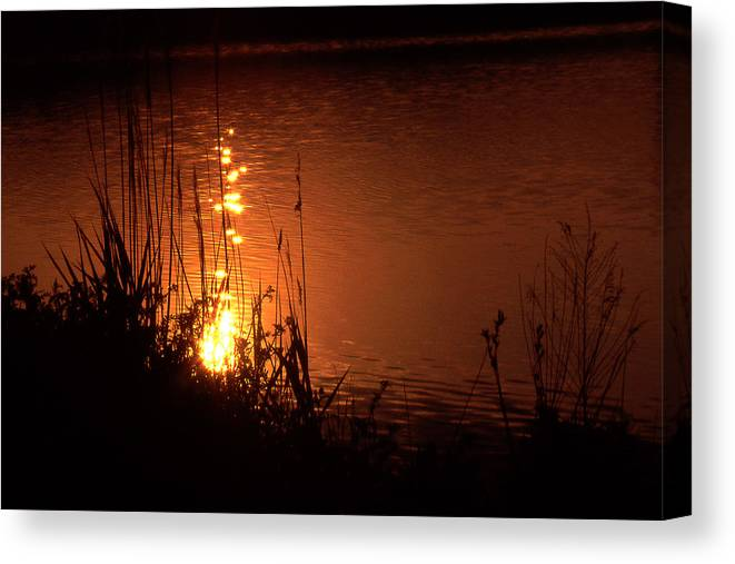 Sunset Canvas Print featuring the photograph Sunset On The Water by Barry Shaffer