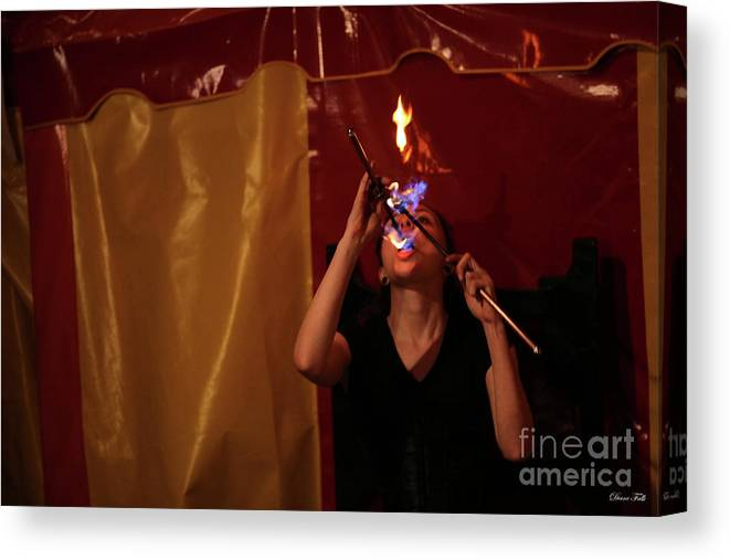 Sideshow Canvas Print featuring the photograph Sunshine And The Art Of Fire by Diane Falk