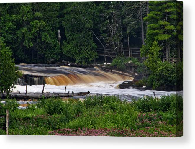 Tahquamenon Falls State Park Canvas Print featuring the photograph Tahquamenon Lower Falls Upper Peninsula Michigan 04 by Thomas Woolworth