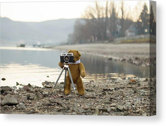 Analog Canvas Print featuring the photograph Teddy Bear Taking Pictures With An Old Camera By The Riverside by Andrea Varga