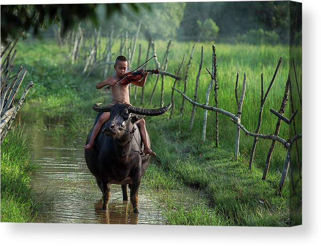 Violin Canvas Print featuring the photograph The Boy Playing The Red Violin In Thailand, Asia by Somchai Sanvongchaiya