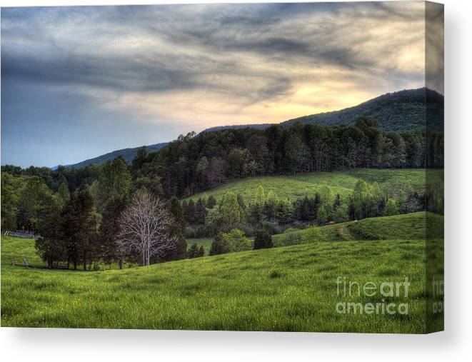 Landscape Canvas Print featuring the photograph The Late Bloomer by Pete Hellmann