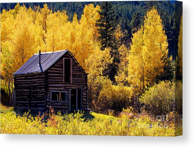 Old Homestead Canvas Print featuring the photograph Tin Roof by Jim Garrison
