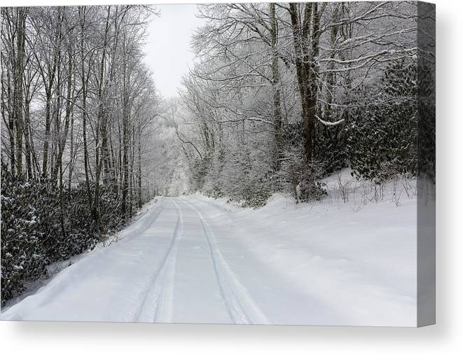 Snow Canvas Print featuring the photograph Tire Tracks In Fresh Snow by D K Wall