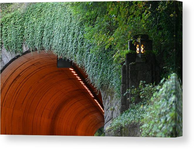 Tooth Rock Canvas Print featuring the photograph Tooth Rock Tunnel by Wendy Raatz Photography
