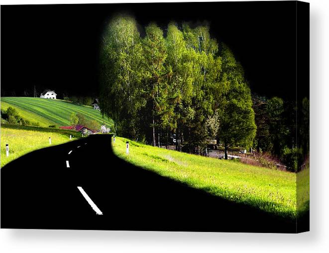 Tree Canvas Print featuring the photograph Trees In Upper Austria by Sascha Meyer