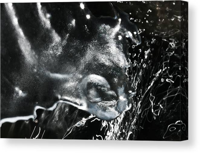 Ice Canvas Print featuring the photograph 'trifecta Of Purity' by Adam M Dee