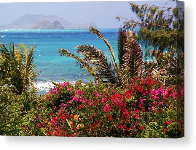 Tropical Canvas Print featuring the photograph Tropical Paradise by Mitch Cat