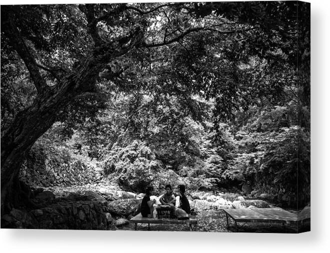 Korea Canvas Print featuring the photograph Under A Tree by Martin Bennie