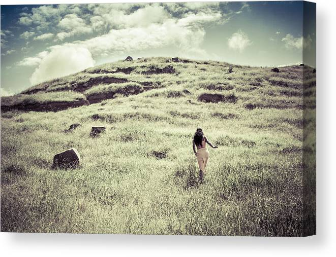 Landscape Canvas Print featuring the photograph Walking The Field by Igor Fracellio