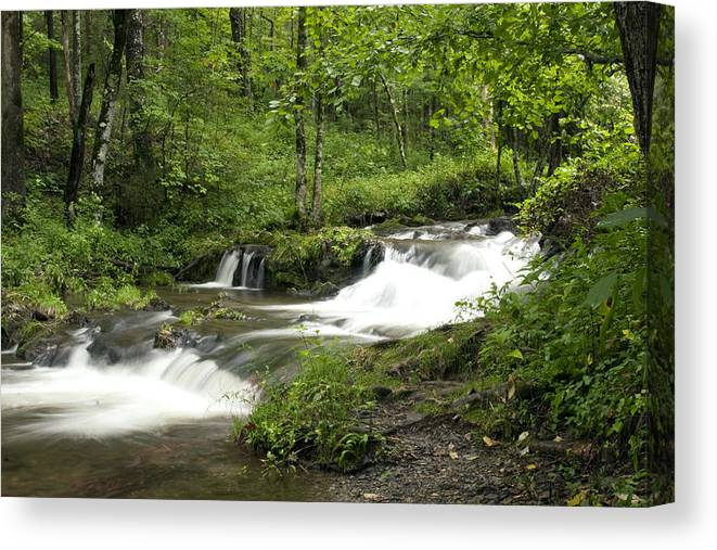 Waterfall Canvas Print featuring the photograph Waterfall Oasis by Tina B Hamilton