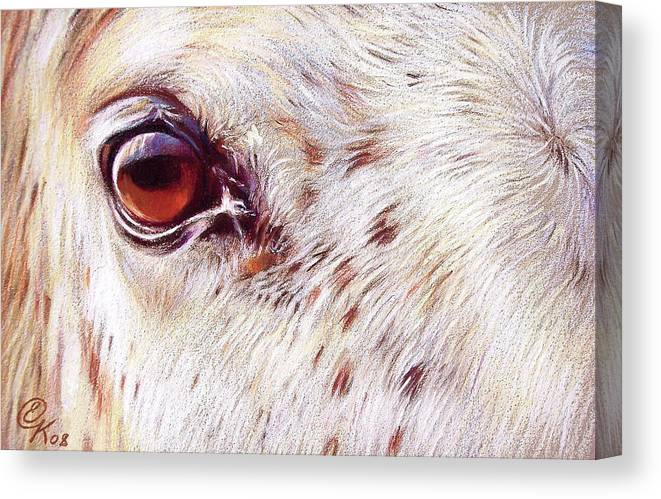 Horse Animal Equine Portrait Drawing Canvas Print featuring the drawing White Horse Close-up by Elena Kolotusha