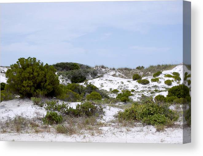 Sand Canvas Print featuring the photograph White Sand Dunes by Tina B Hamilton