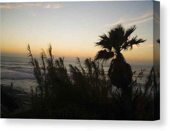 La Jolla Canvas Print featuring the photograph Windansea Beach by Christopher Woods