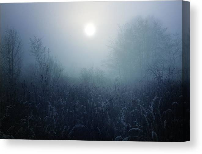 Winter Canvas Print featuring the photograph Winter Afternoon - Poland by Cambion Art