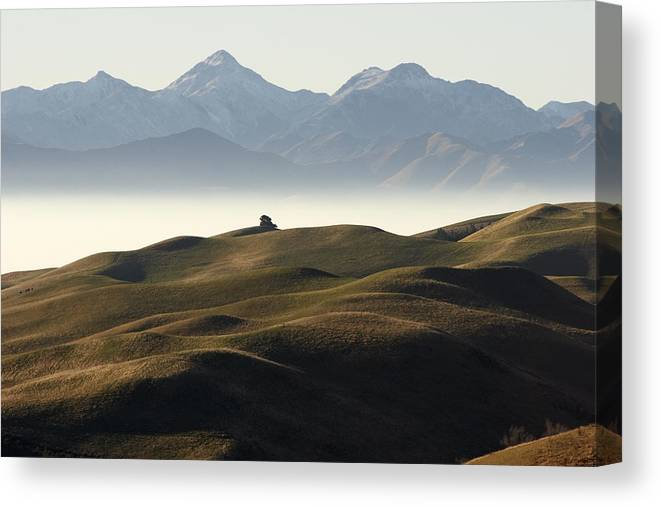 Pyramid Canvas Print featuring the photograph Winter Evening At Pyramid Valley by Geoff Bryant