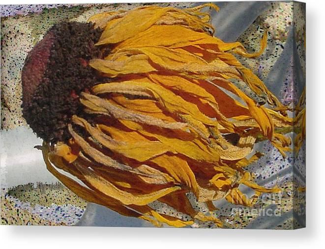 Digital Art Canvas Print featuring the digital art Winter Flower by Ron Bissett