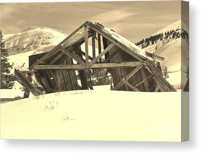 Nature Canvas Print featuring the photograph Winter History 2 by Tonya Hance