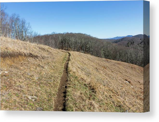 Empty Canvas Print featuring the photograph Winter Trail - December 7, 2016 by D K Wall