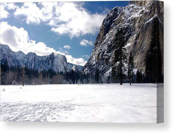 Yosemite Canvas Print featuring the photograph Yosemite Meadow In Winter by Michael Courtney