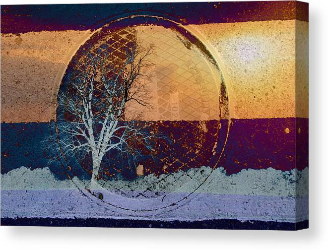 Abstracts Canvas Print featuring the photograph You Only See What You Know by Jan Amiss Photography
