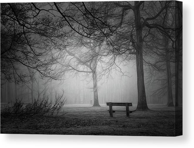 Forest Canvas Print featuring the photograph Frozen In Time by Saskia Dingemans