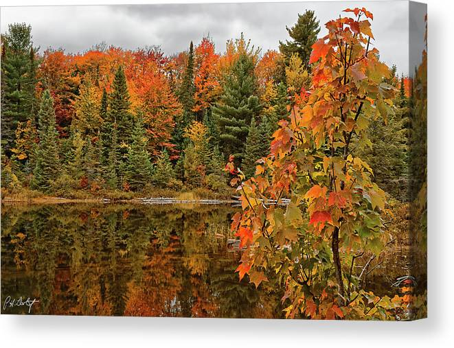 Algonquin Provincial Park Canvas Print featuring the photograph Autumn Reflections by Phill Doherty