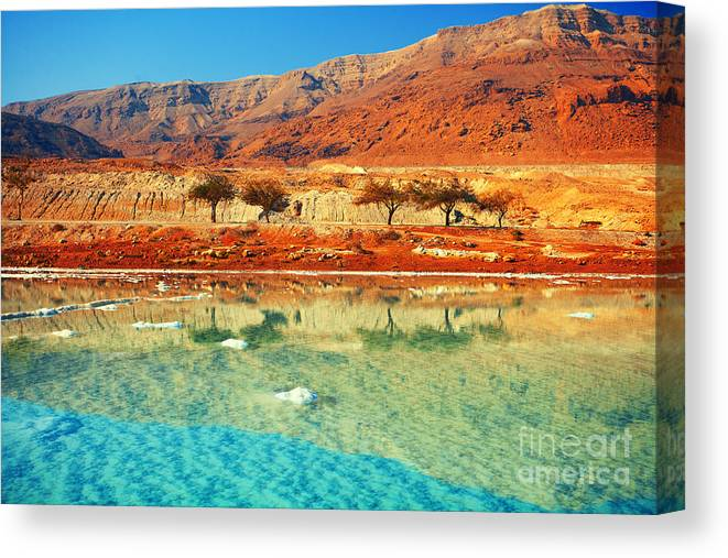 Beauty Canvas Print featuring the photograph Dead Sea by Vvvita