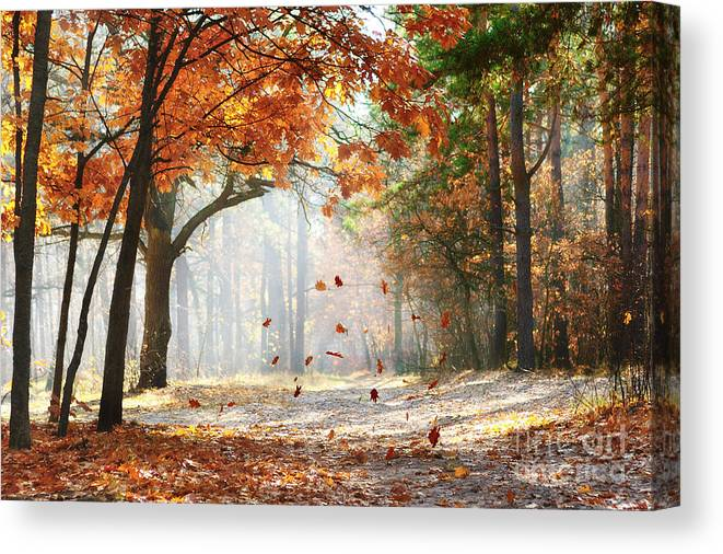Forest Canvas Print featuring the photograph Falling Oak Leaves On The Scenic Autumn by Mny-jhee