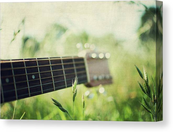 Grass Canvas Print featuring the photograph Guitar In Country Meadow by Images By Victoria J Baxter