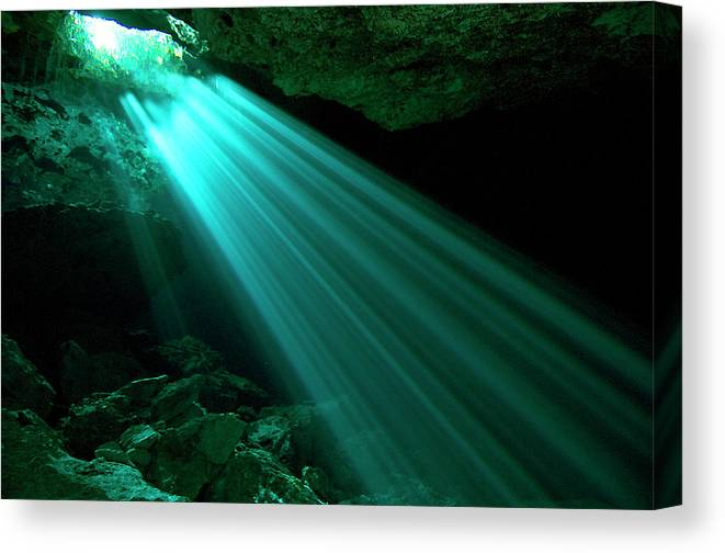 Underwater Canvas Print featuring the photograph Hidden Worlds Cenotes, Yucatan Mexico by Jens Kuhfs