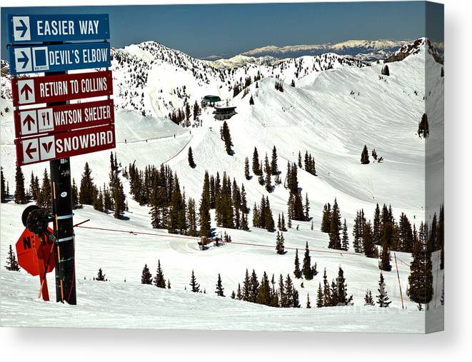 Alta Canvas Print featuring the photograph Looking Toward The Collins Chair by Adam Jewell