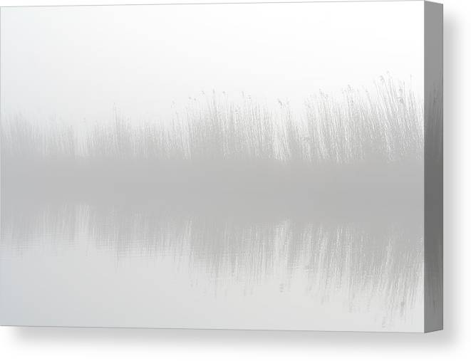 Scenics Canvas Print featuring the photograph Misty Morning At The Riverside by Marceltb