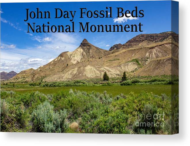 Oregon Canvas Print featuring the photograph Oregon - John Day Fossil Beds National Monument Sheep Rock 1 by G Matthew Laughton