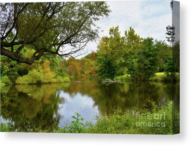 Pictures Of Flowers Canvas Print featuring the photograph Painted Fall On The Back Pond by Skip Willits