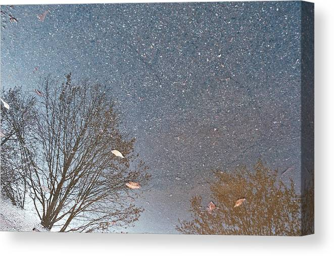 Landscape Canvas Print featuring the photograph Reflection by Jamie Alicia Ary