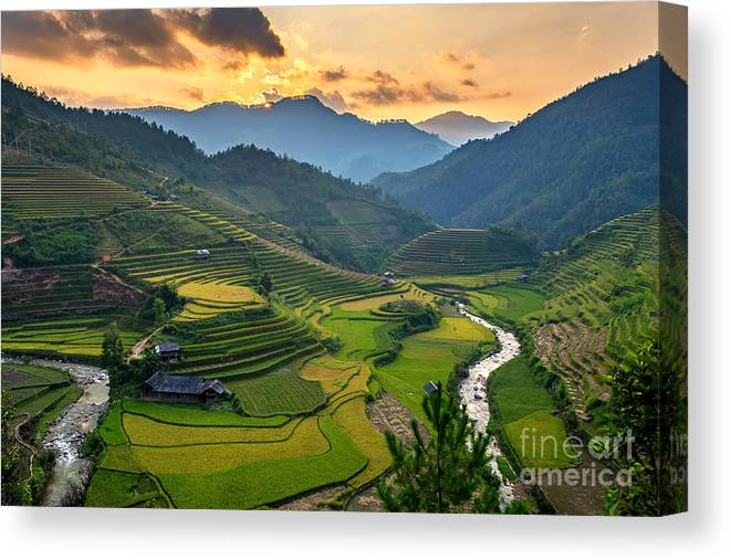 Sunshine Canvas Print featuring the photograph Rice Field On Terraces Panoramic by Cw Pix