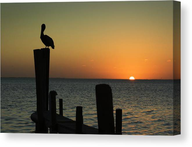 Orange Color Canvas Print featuring the photograph South Padre Island, Texas Sunset With by Yangyin